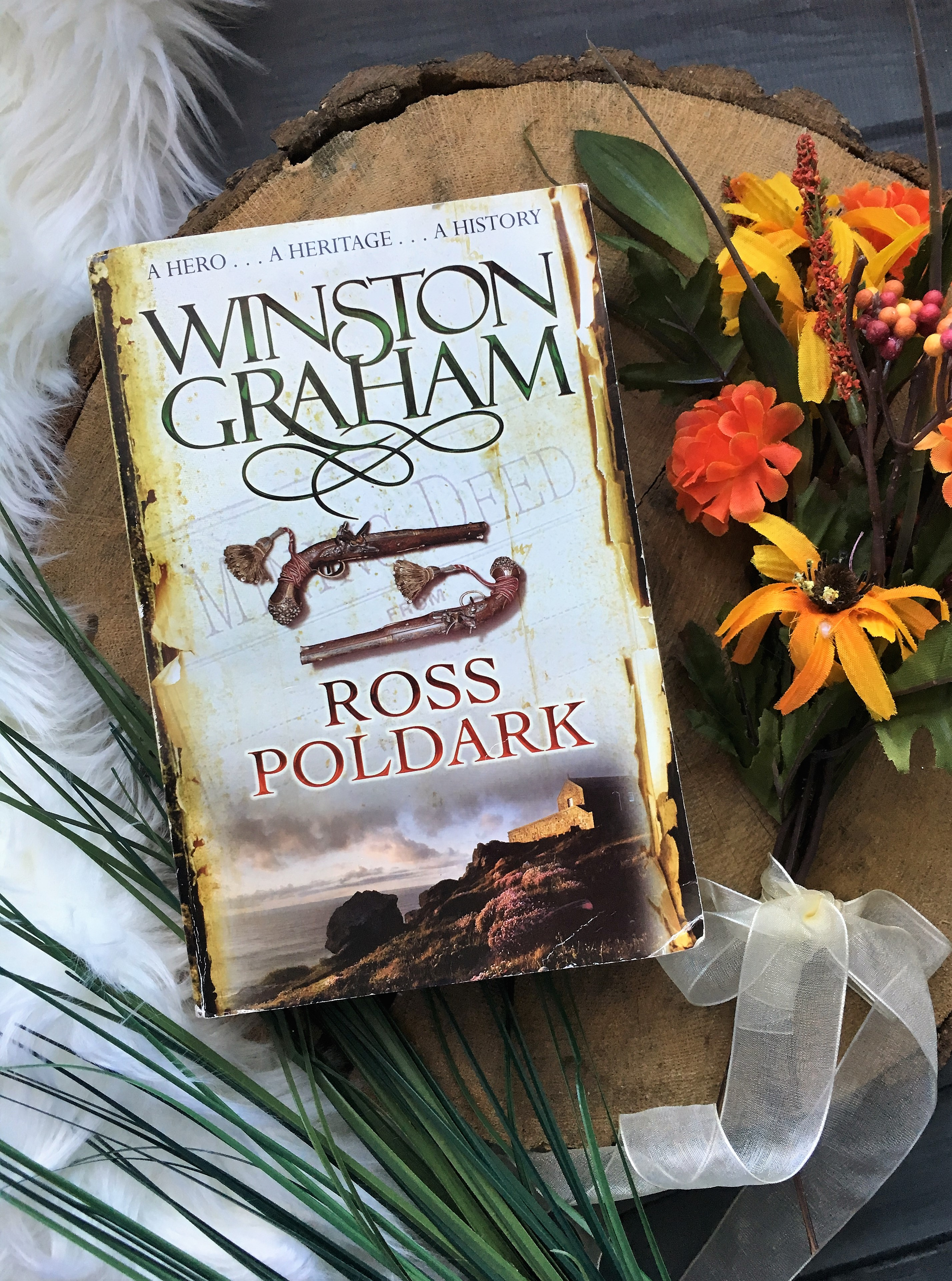 Abosas ross poldark – book review – to read is to breathe